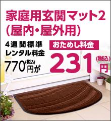 家庭用玄関マット2(屋内・屋外用)